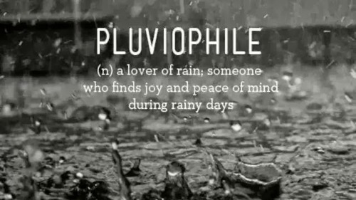 Definition of pluviophile
