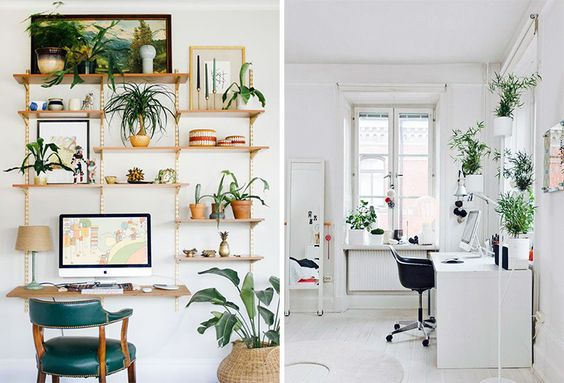 Tropical Study Room